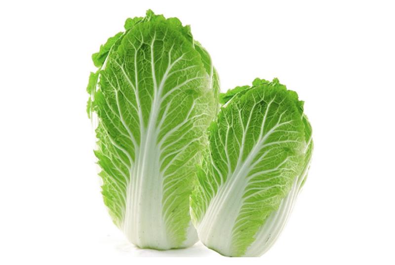 大连蔬菜配送白菜